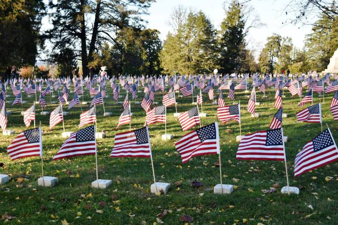Flags at cemetery